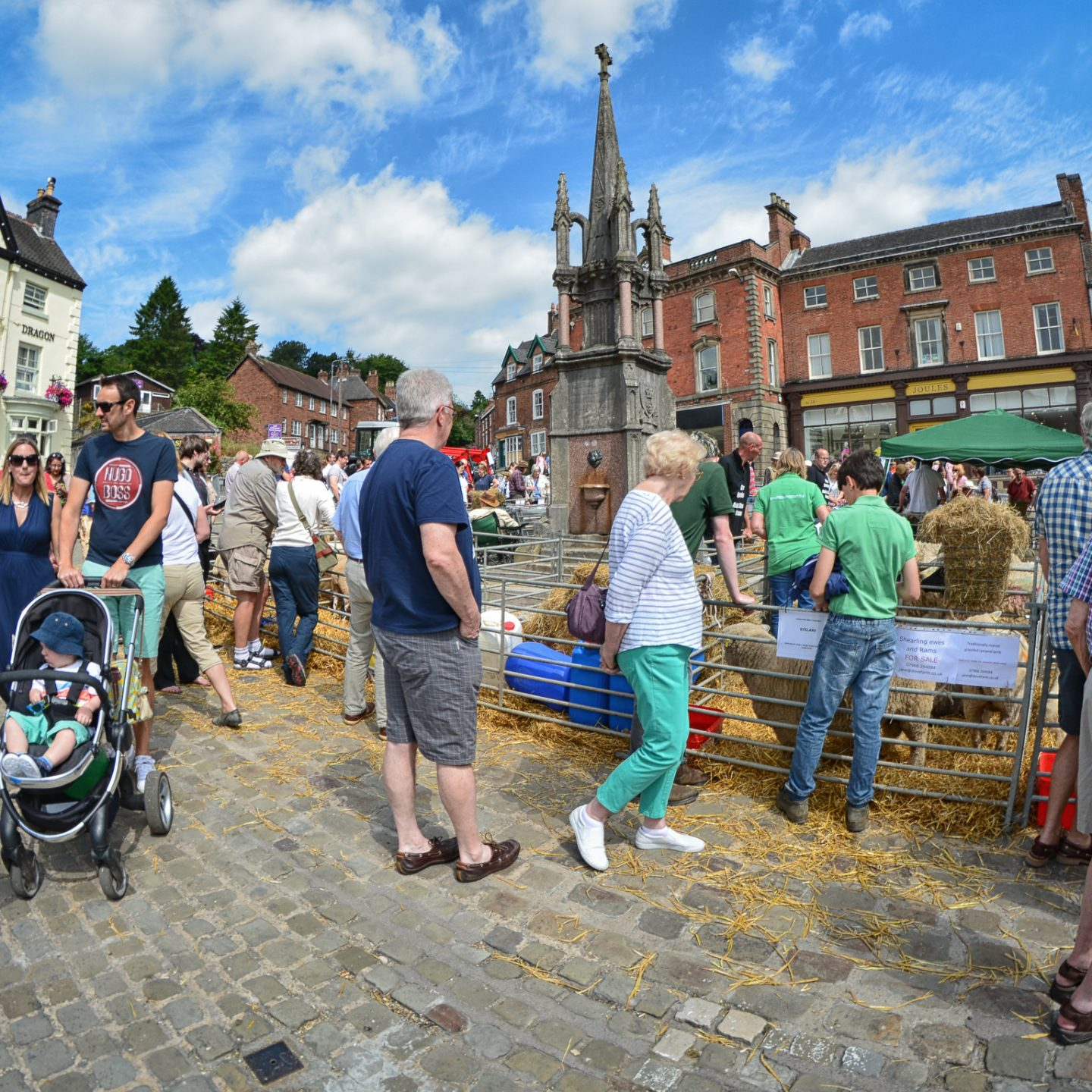 Ashbourne Sheep Fair 2018
