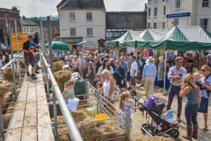 Crowds at the sheep fair watching a talk
