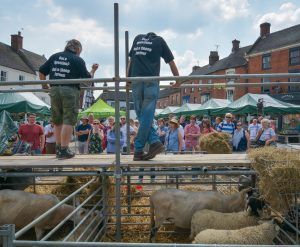 Richard Spencer & James Metcalfe doing a sheep talk